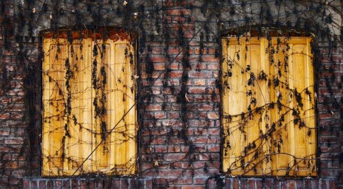 Memories of Chaos by Derek Flynn